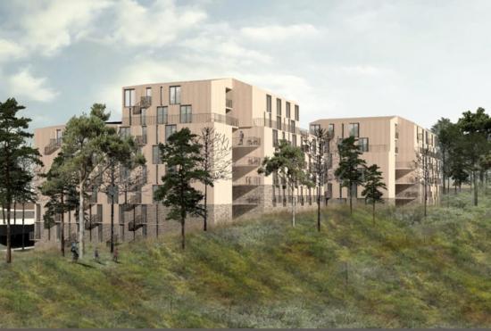 Inspirationen tillprojektet har hämtatsfrån löven och trädets egenskaper och form.Fasaderna kommer vara tillverkade av trä, med de nedersta våningarna i naturtegel.