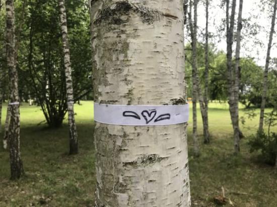 En björkstrid väntar på Järva, hotar nätverket Låt Parken Leva. Den 16 augusti adopterades det tusende trädet i Järva DiscGolfPark genom en gåva på 50 kronor till kampen för parken.