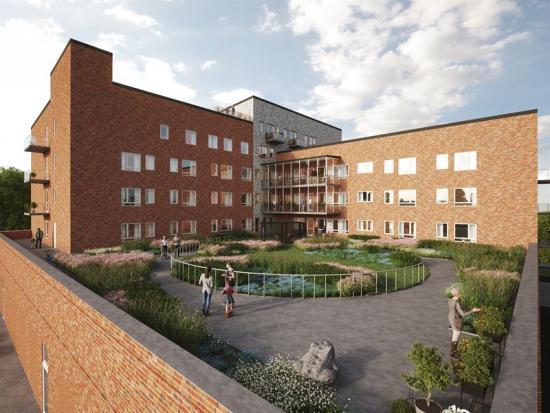 Fastighetens takträdgård (bilden är en illustration).