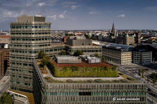 Niagara, Malmö universitet.