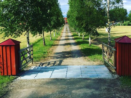 Färisterna är en effektiv metod att hålla vilt borta från motorvägar, och boskap inne på gården.