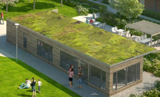 Gröna tak har många positiva effekter på miljön. Bilden är en illustration.