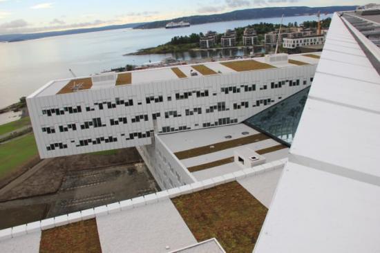 Sedumtak på Statoil Fornebue utanför Oslo.