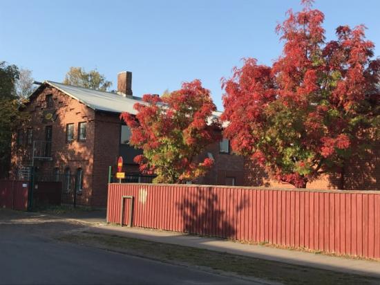 I det gamla gasverket finns Ungdomens hus. Byggnaden ska demonteras, marken saneras sedan ska byggnaden återuppbyggas.